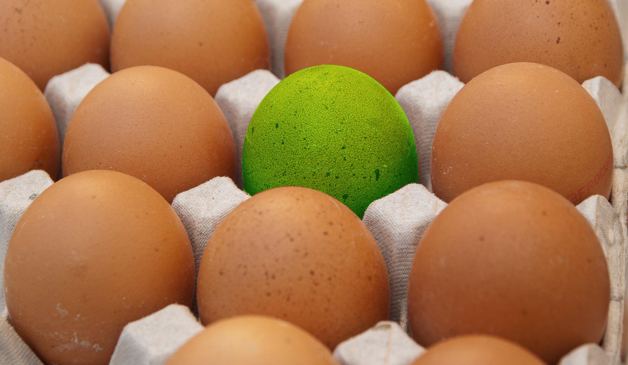 Altre Uova a rischio contaminazione salmonella, ritirati altri lotti. ELENCO