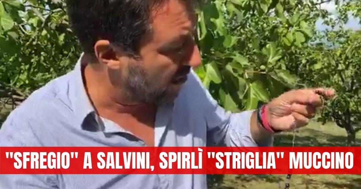 Matteo Salvini, insulti, fischi e lanci di pomodori: l'intervento dura 5 minuti